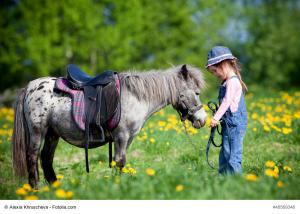 Kinder lieben Pferde. Ein Plüschpferd oder Holzpferd hilft dabei die ersten echten Reiterfahrungen zu machen.