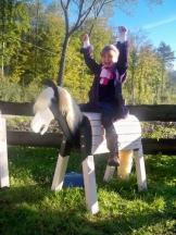 Holzpferd Filou 80 als Fantasie Schecke - 1