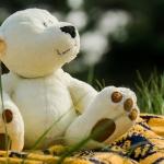Schöner Riesen Teddy